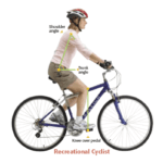Educational graphic of posture for a traditional cyclist used at Phoenix Physical Therapy.